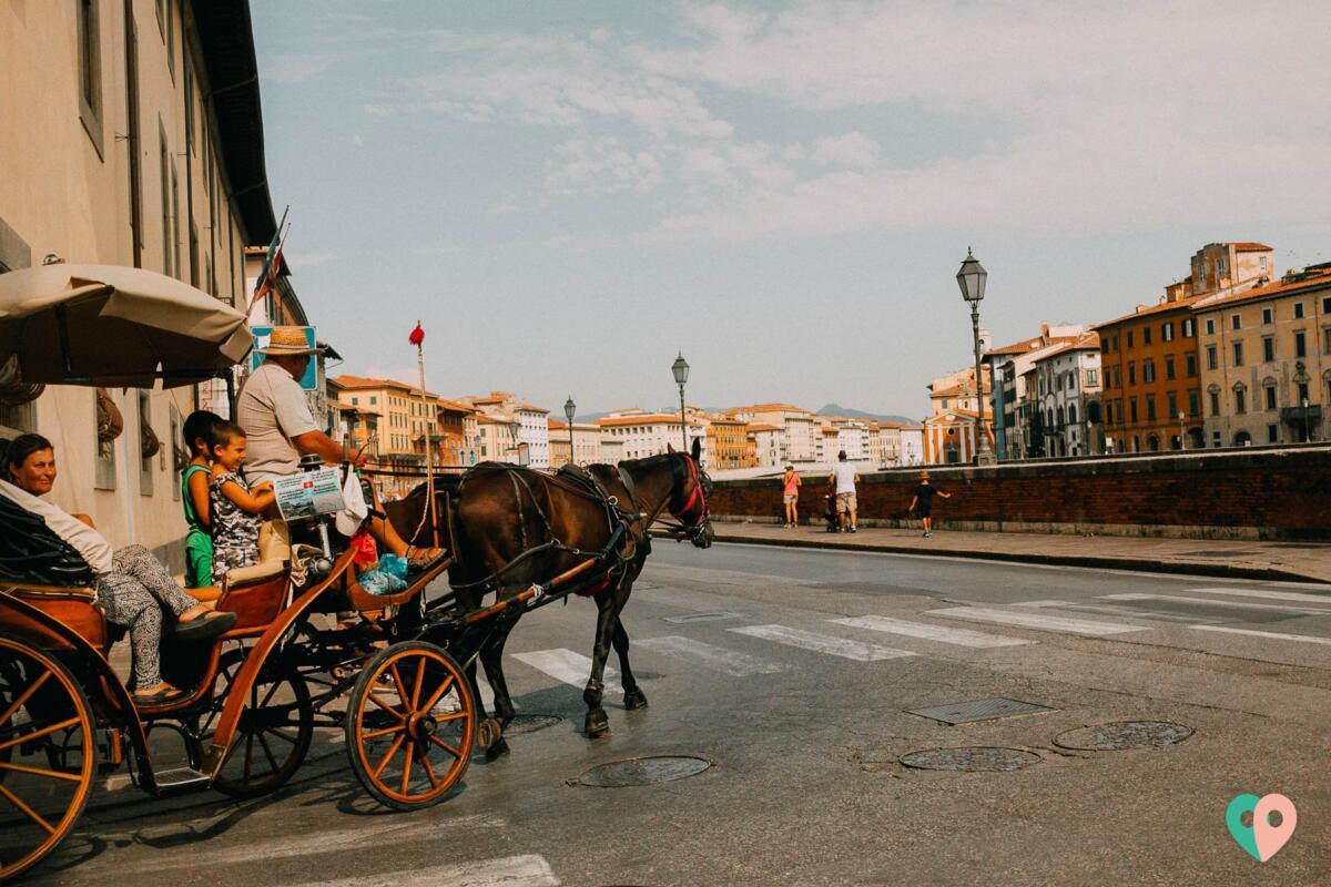 Kutsche in Pisa