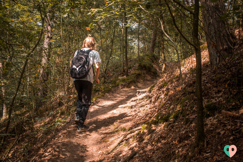 Premium Wanderweg Galgenvenn