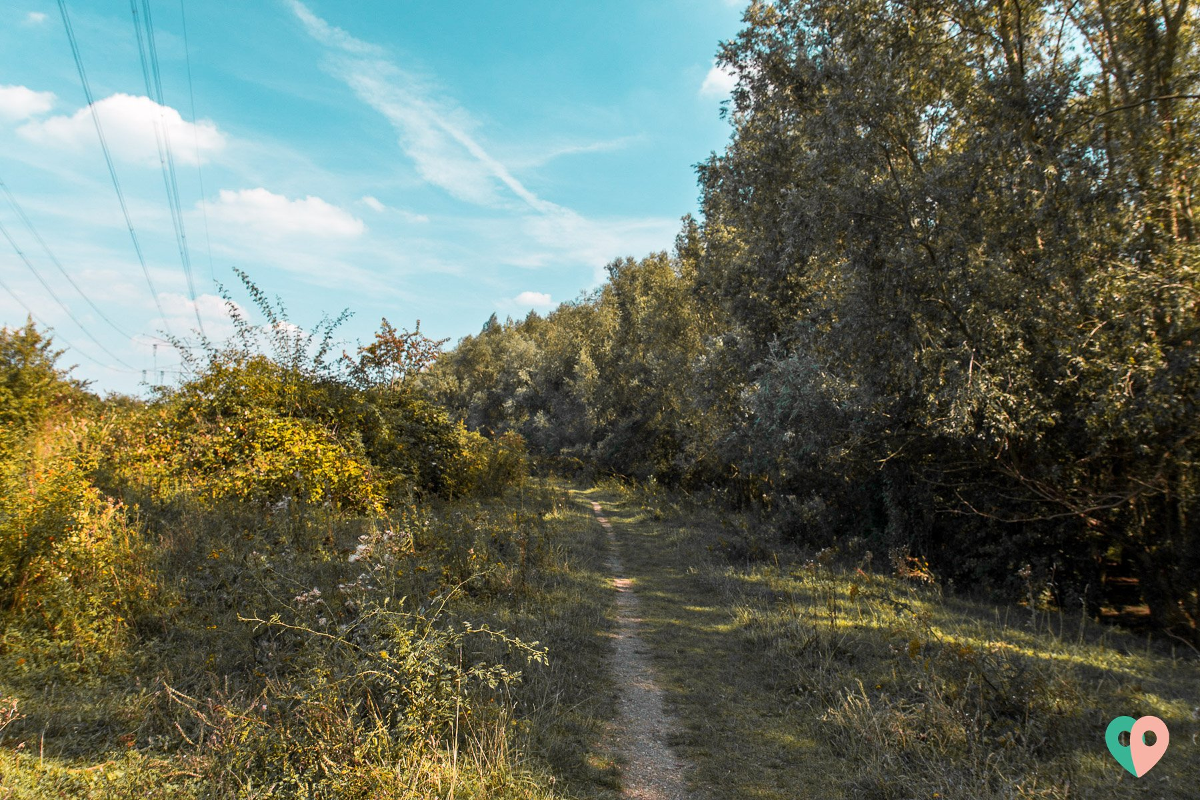 Premium Wanderweg Molenplas