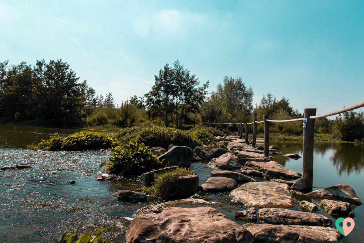 Premium Wanderweg Molenplas - Trittsteine