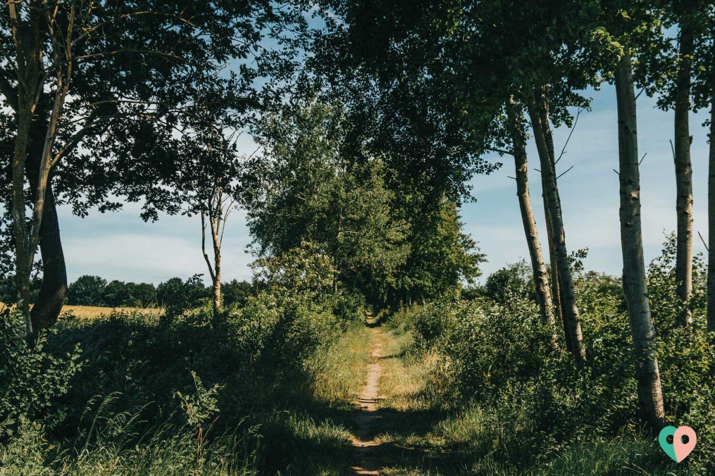 Der Premium-Wanderweg Rode Beek am Niederrhein