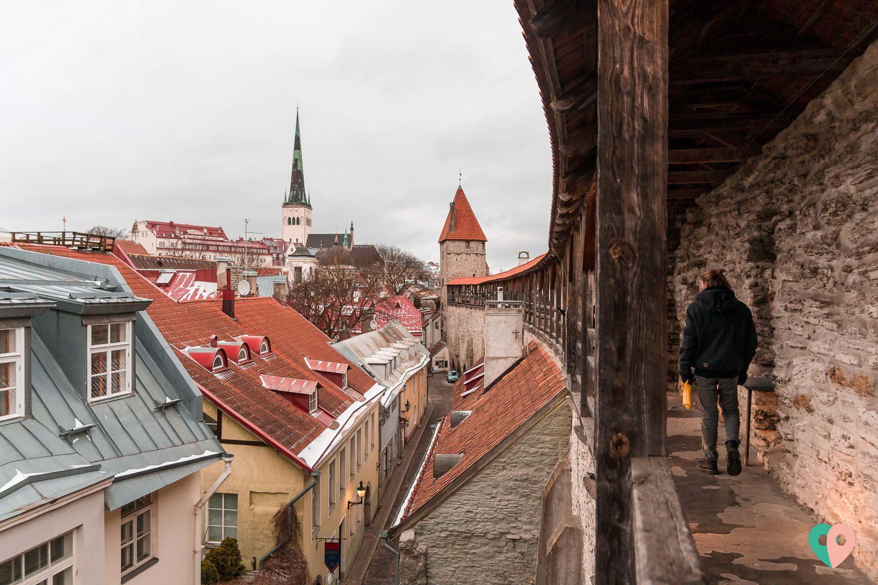 Hellemann Tower in Tallinn & Town Wall - die Stadtmauer in Tallinn
